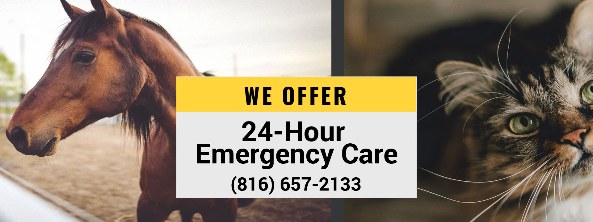 We offer 24-hour emergency care for your pets (816) 657-2133